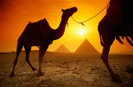 egypt_terror
